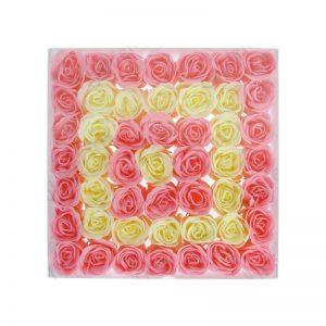 petal-rose-pinkwhite
