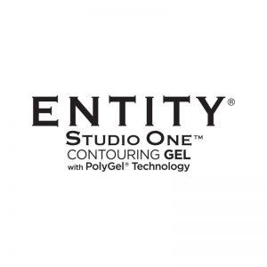 Entity Studio One